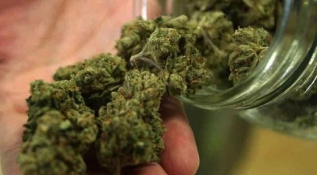 12 Kilo 328 gram Skunk madde ele geçirildi:'İzmir otogarında uyuşturucu operasyonu'
