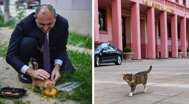 Adalet Bakanı Gül: 'Geri sayım başladı'